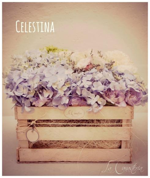 Celestina_Title