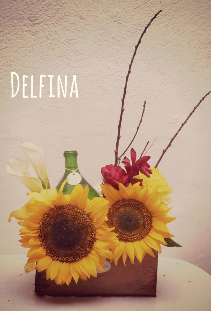 Delfina_Title_Pic