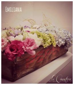 emiliana2