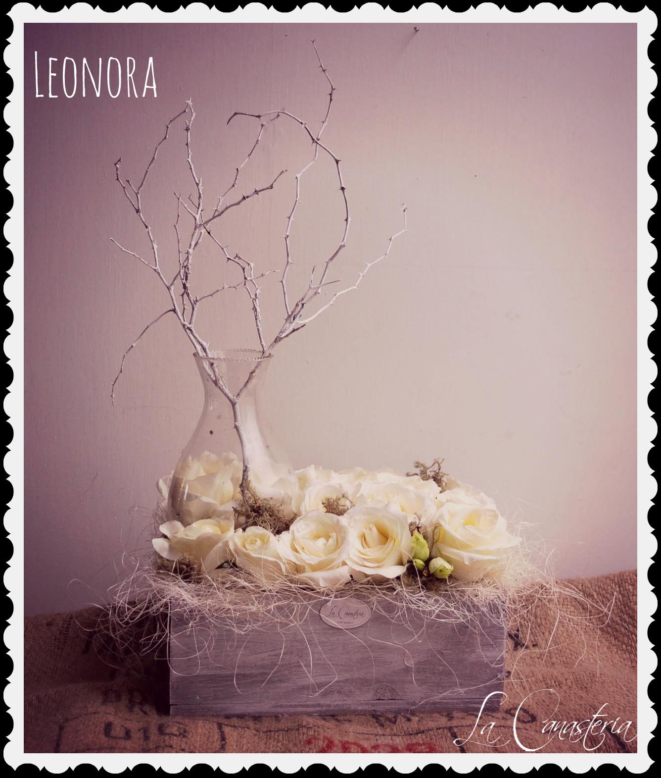 Leonora_Title_Logo_Frame