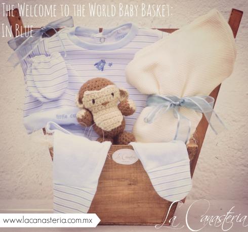 thewelcometotheworldbabybasket_blue_title_logo